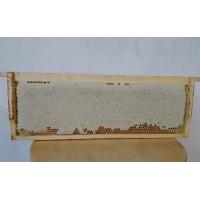 Мёд сотовый в магазинной рамке